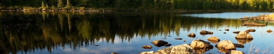 lake_tree_reflection